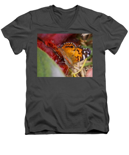 Men's V-Neck T-Shirt featuring the photograph Butterfly by Erika Weber