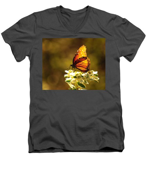 Butterfly In Sun Men's V-Neck T-Shirt