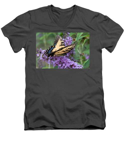 Butterfly Landing Men's V-Neck T-Shirt