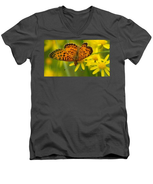 Men's V-Neck T-Shirt featuring the photograph Butterfly by James Peterson
