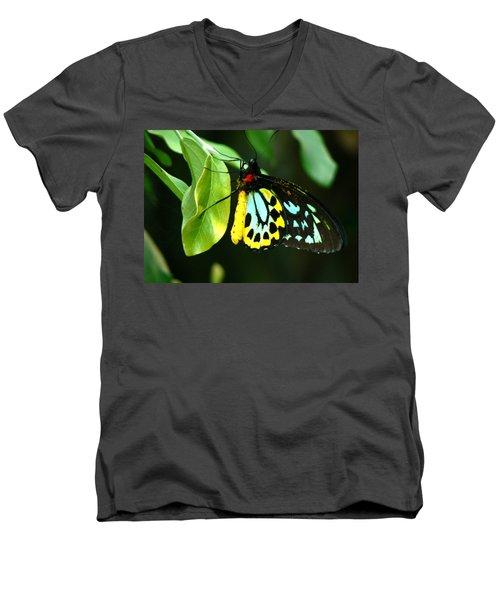 Butterfly On Leaf Men's V-Neck T-Shirt by Laurel Powell