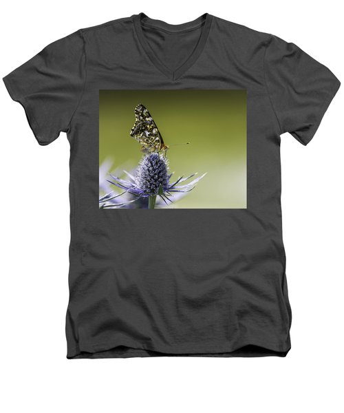 Butterfly On Thistle Men's V-Neck T-Shirt