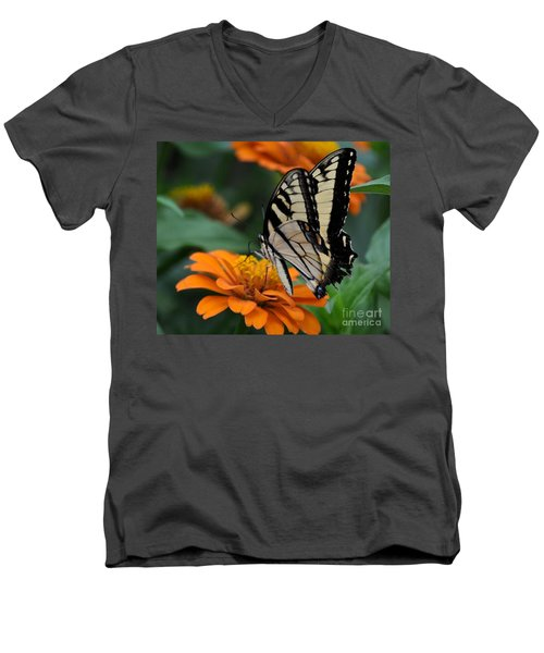 Butterfly On Zinnia Men's V-Neck T-Shirt