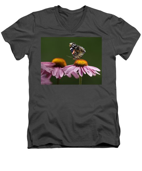 Men's V-Neck T-Shirt featuring the photograph Butterfly Red Admiral On Echinacea by Peter v Quenter