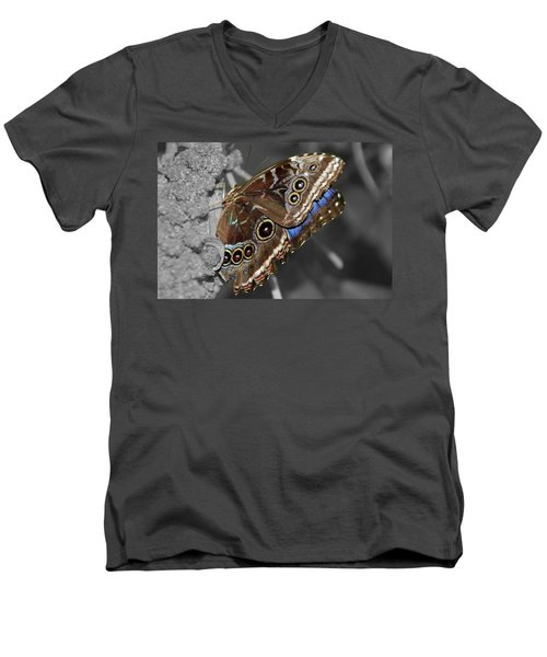 Butterfly Spot Color 1 Men's V-Neck T-Shirt