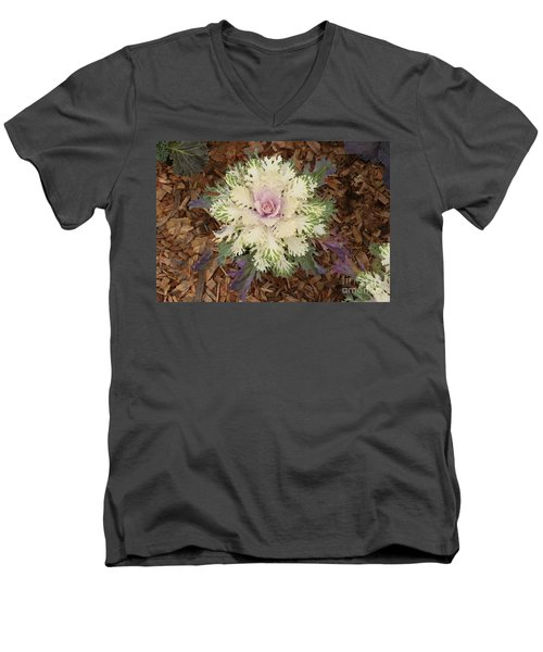 Cabbage Rose Men's V-Neck T-Shirt
