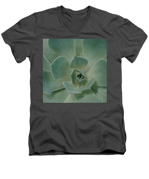 Cactus Heart Men's V-Neck T-Shirt