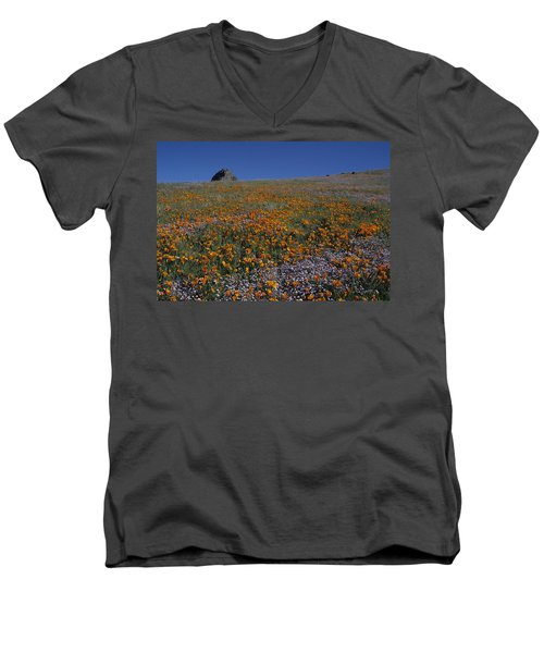 California Gold Poppies And Baby Blue Eyes Men's V-Neck T-Shirt