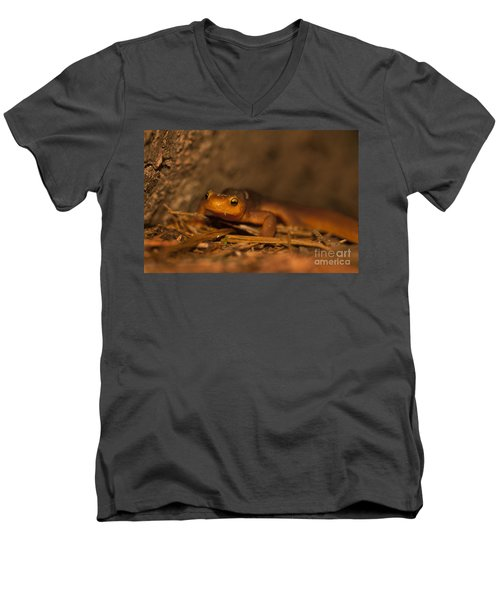 California Newt Men's V-Neck T-Shirt by Ron Sanford