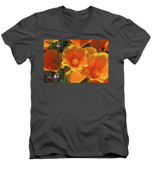 California Poppies Men's V-Neck T-Shirt by Ben and Raisa Gertsberg