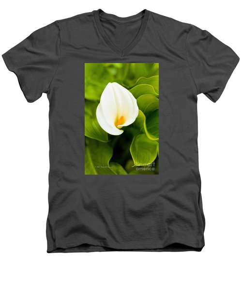 Calla Lily Plant Men's V-Neck T-Shirt