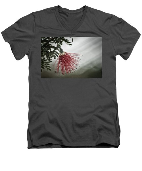 Calliandra Californica Men's V-Neck T-Shirt