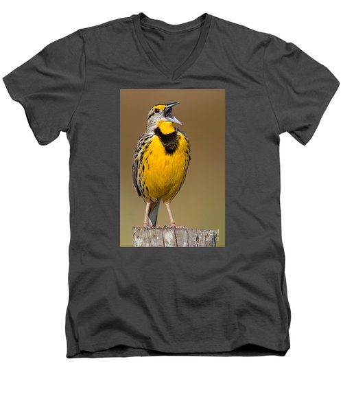 Men's V-Neck T-Shirt featuring the photograph Calling Eastern Meadowlark by Jerry Fornarotto