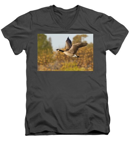 Men's V-Neck T-Shirt featuring the photograph Canada Goose In The Skies  by Bryan Keil