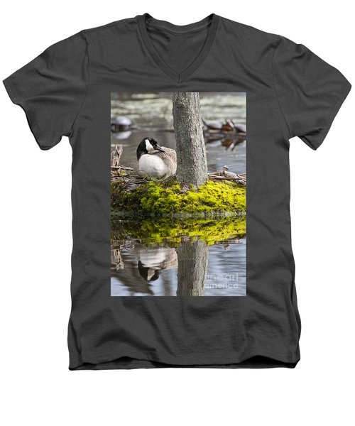 Canada Goose On Nest Men's V-Neck T-Shirt