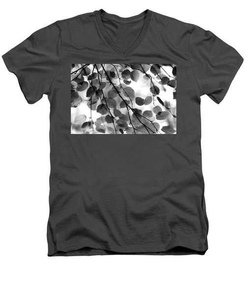 Canopy Men's V-Neck T-Shirt