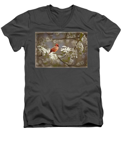 Cardinal And Blossoms Men's V-Neck T-Shirt by Bonnie Willis