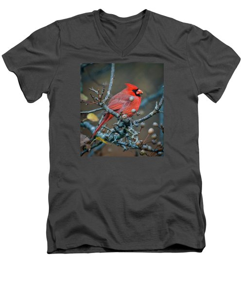 Men's V-Neck T-Shirt featuring the photograph Cardinal In The Berries by Kerri Farley