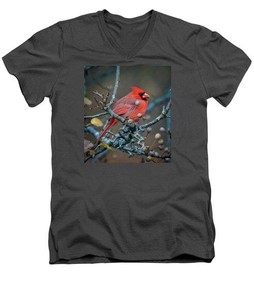 Cardinal In The Berries Men's V-Neck T-Shirt by Kerri Farley