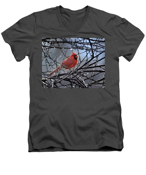 Men's V-Neck T-Shirt featuring the photograph Cardinal In The Rain   by Nava Thompson