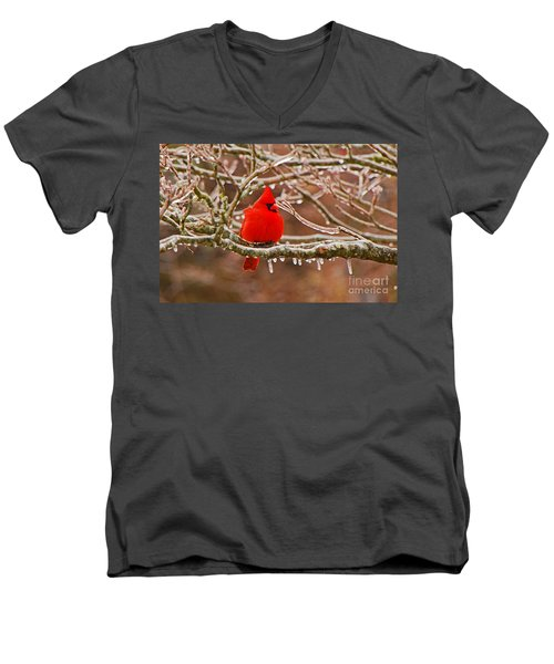 Cardinal Men's V-Neck T-Shirt by Mary Carol Story