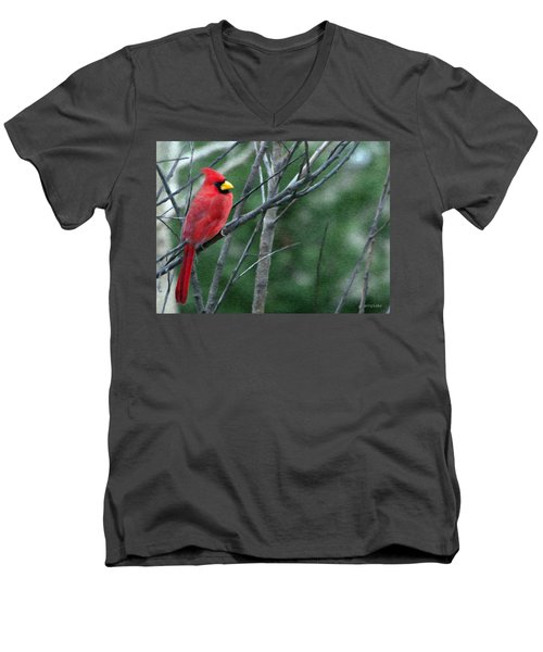 Cardinal West Men's V-Neck T-Shirt