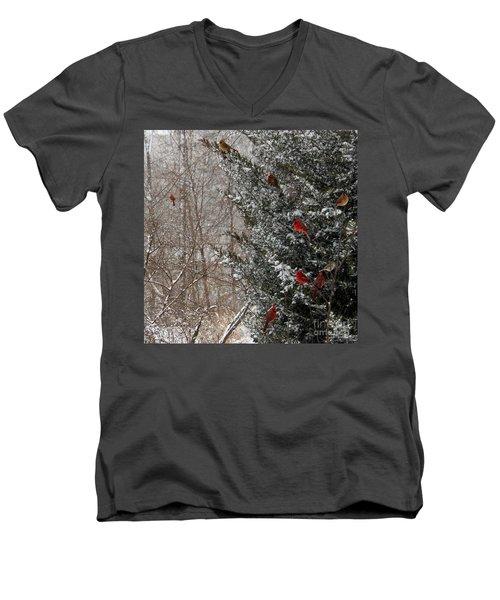 Cardinals In Winter 1 Square Men's V-Neck T-Shirt