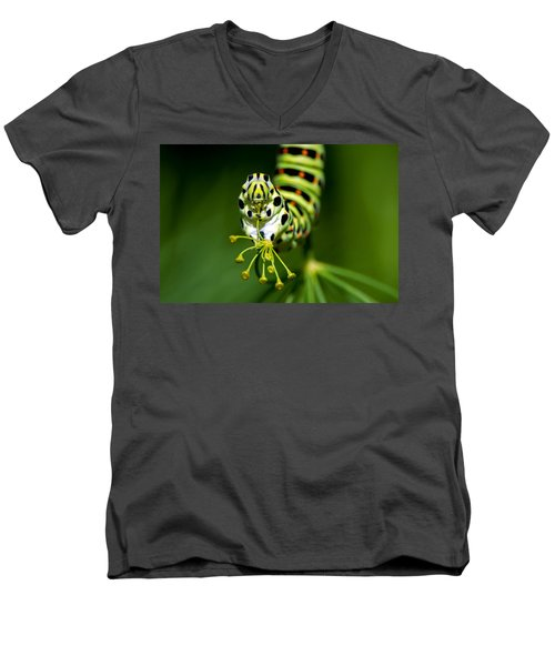Caterpillar Of The Old World Swallowtail Men's V-Neck T-Shirt by Torbjorn Swenelius