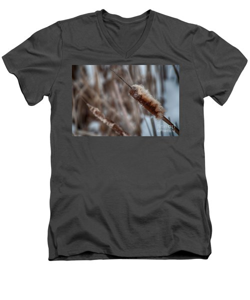 Men's V-Neck T-Shirt featuring the photograph Cattails by Bianca Nadeau