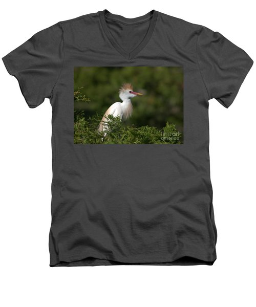 Cattle Egret No. 5 Men's V-Neck T-Shirt