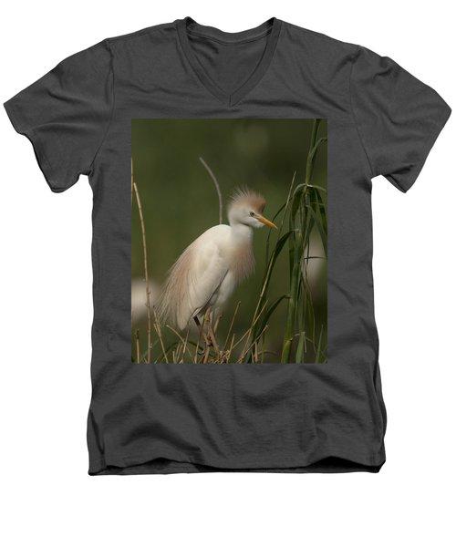 Cattle Egret Men's V-Neck T-Shirt
