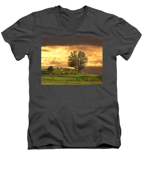 Cattle On A Hill Men's V-Neck T-Shirt