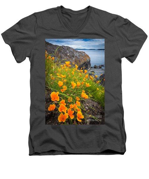 Cattle Point Poppies Men's V-Neck T-Shirt