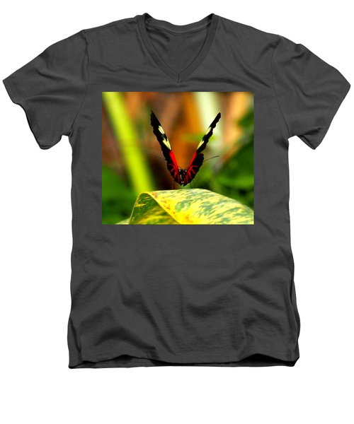 Cattleheart Butterfly  Men's V-Neck T-Shirt by Amy McDaniel