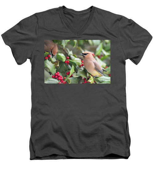 Cedar Waxwing In Holly Tree Men's V-Neck T-Shirt
