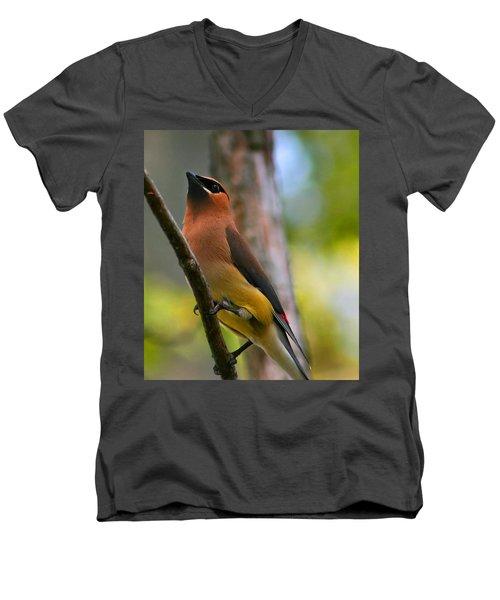 Cedar Wax Wing Men's V-Neck T-Shirt by Roger Becker