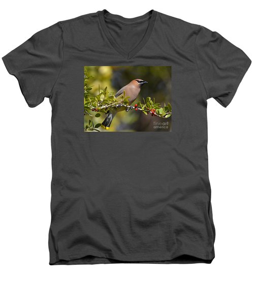 Men's V-Neck T-Shirt featuring the photograph Cedar Waxwing And Red Berries by Kathy Baccari