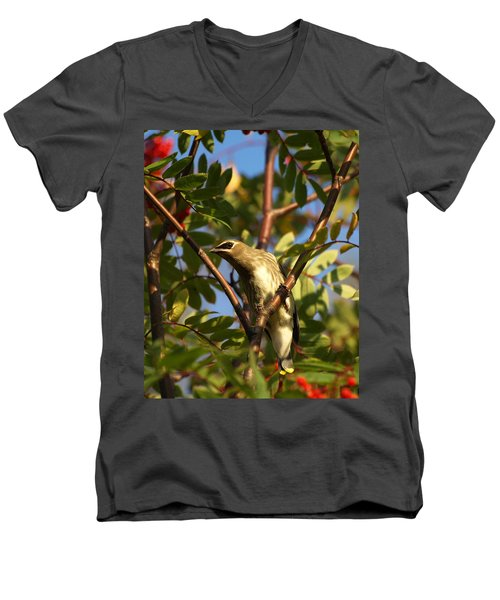 Men's V-Neck T-Shirt featuring the photograph Cedar Waxwing by James Peterson