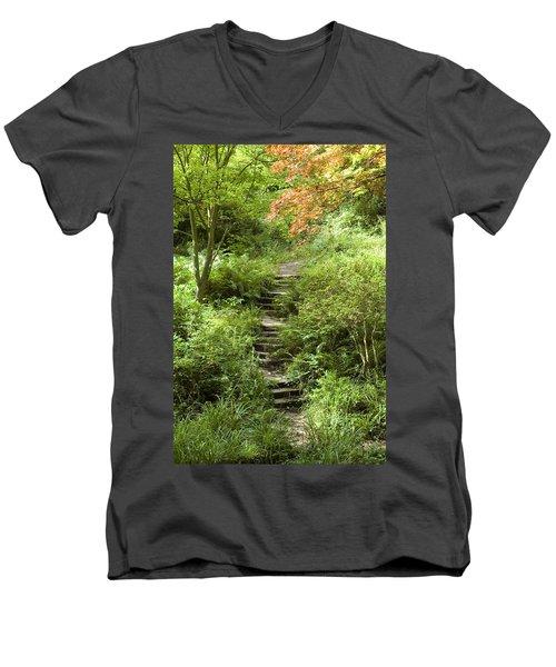 Cefn Onn Men's V-Neck T-Shirt by Jeremy Voisey