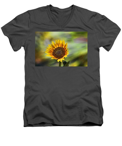 Celebrating The Sunlight Men's V-Neck T-Shirt