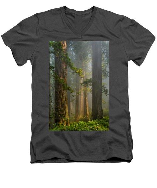 Center Of Forest Men's V-Neck T-Shirt