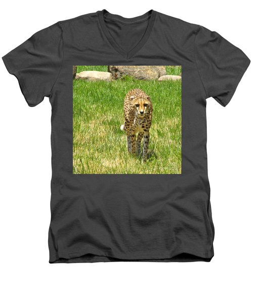 Cheetah Approaching Men's V-Neck T-Shirt by CML Brown