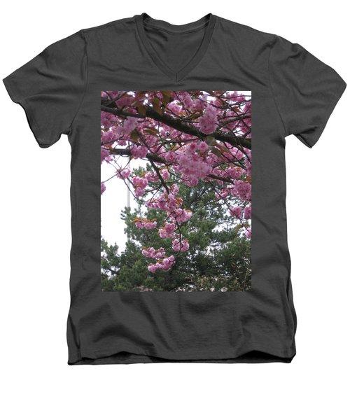 Cherry Blossoms 1 Men's V-Neck T-Shirt by David Trotter