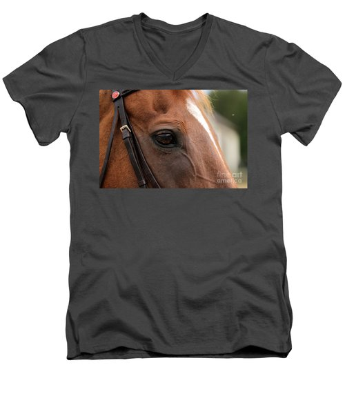 Chestnut Horse Eye Men's V-Neck T-Shirt