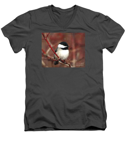 Men's V-Neck T-Shirt featuring the photograph Chickadee by Susan  Dimitrakopoulos