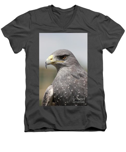 Chilean Eagle Men's V-Neck T-Shirt