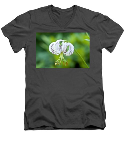 Chinese Lily Men's V-Neck T-Shirt by Lana Enderle