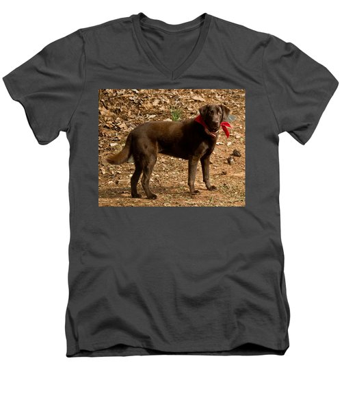 Men's V-Neck T-Shirt featuring the photograph Chocolate Lab by Robert L Jackson