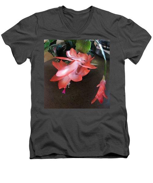 Christmas Cactus Bloom Men's V-Neck T-Shirt