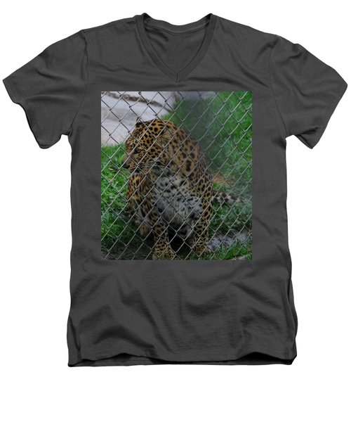 Christmas Leopard I Men's V-Neck T-Shirt